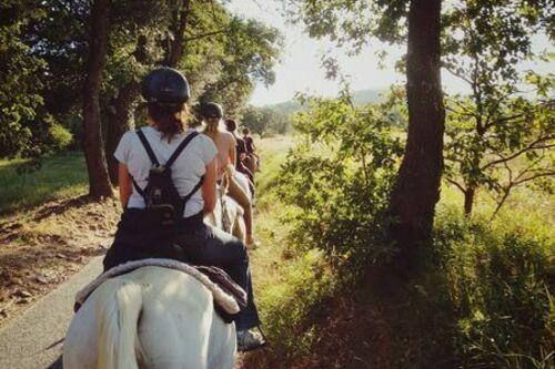 A cheval dans les Maures
