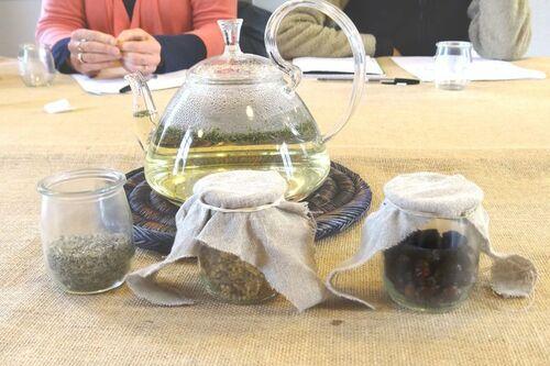 Atelier herboristerie