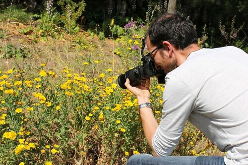 "Ateliers & Formations ''Photographier la nature"""