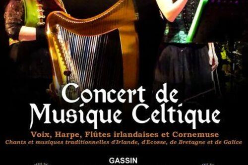Ensemble de musique celtique