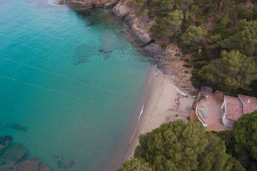 Baie du Figuier