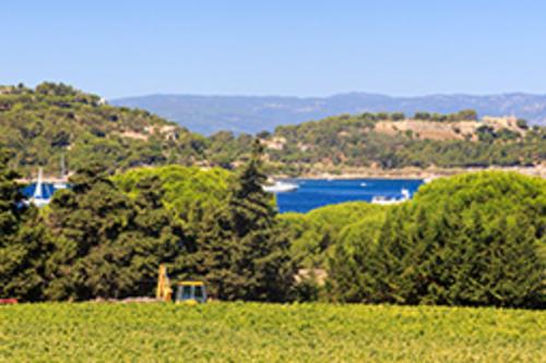 Domaine Cap Saint Pierre 1