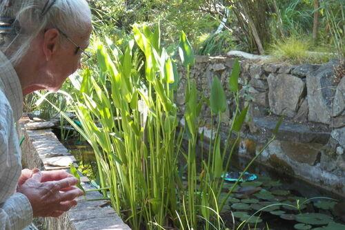 La propriétaire du jardin remarquable L'Hardy à Gassin - https://gassin.eu