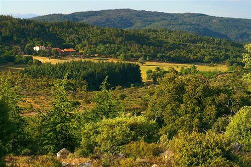 Plateau Lambert