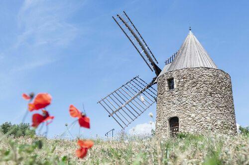 Moulin St Roch Grimaud