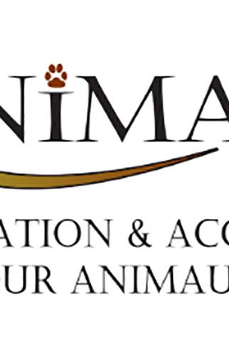 Animal'up 1
