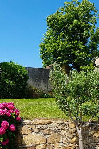 Les roses du château Barbeyrolles à Gassin - https://gassin.eu