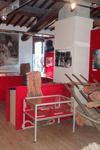 Exposition Le Chêne-Liège et son Ecorce