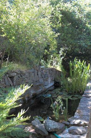 Bassin du jardin remarquable L'Hardy à Gassin - https://gassin.eu