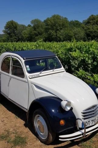 2 chevaux - Saint-Tropez - Beyond the Wine