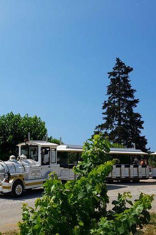 Le petit train des vignes de Gassin lors d'un arrêt au château Barbeyrolles - https://gassin.eu