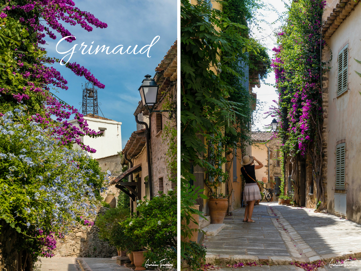 Grimaud village bougainvilliers